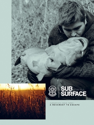 Subsurface 3